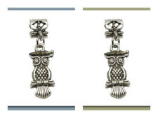 Picture of 6x4 mm, tube beads and charm, alloy, silver-plated, owl master, 2 pieces