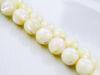 Picture of 8x8 mm, round, organic gemstone beads, seashell, white